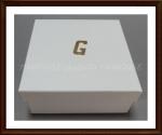Ggr04546_1